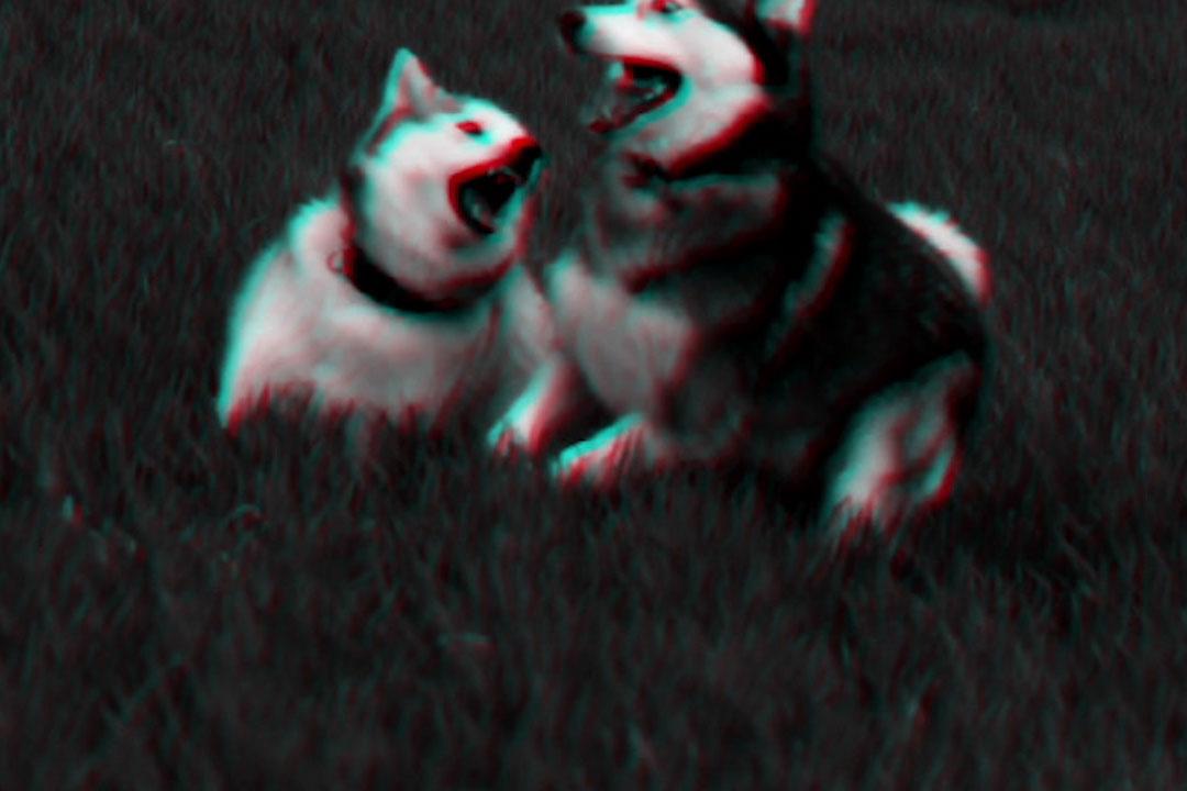 Rone-Beast,-Pt.-2.00_02_18_06.Image-fixe027