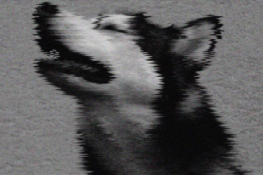 Rone-Beast,-Pt.-2.00_01_33_07.Image-fixe016