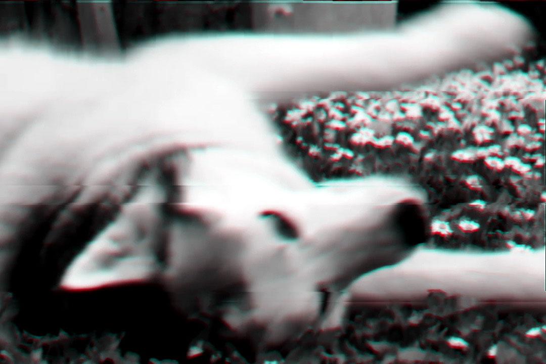 Rone-Beast,-Pt.-2.00_01_51_05.Image-fixe018